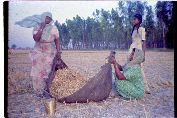 Memories of Punjab - 16