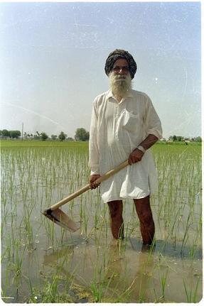 Memories of Punjab - 48