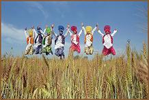 Bhangra Folk Dancers
