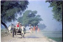Memories of Punjab - 17