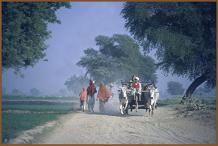 Memories of Punjab - 57